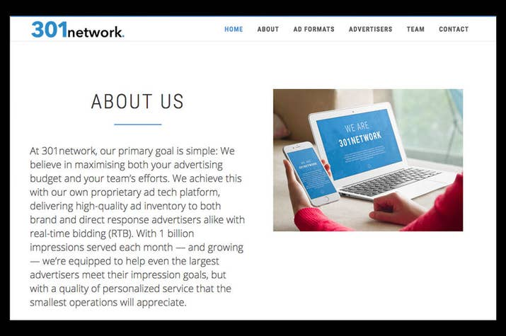 A screenshot of 301network.com