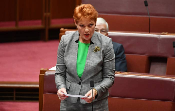 Here Are All The Absolutely Logical Reasons Pauline Hanson