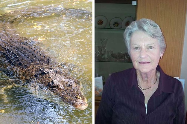 Human Remains Found Inside Crocodile Believed To Have Killed 79-Year-Old Woman