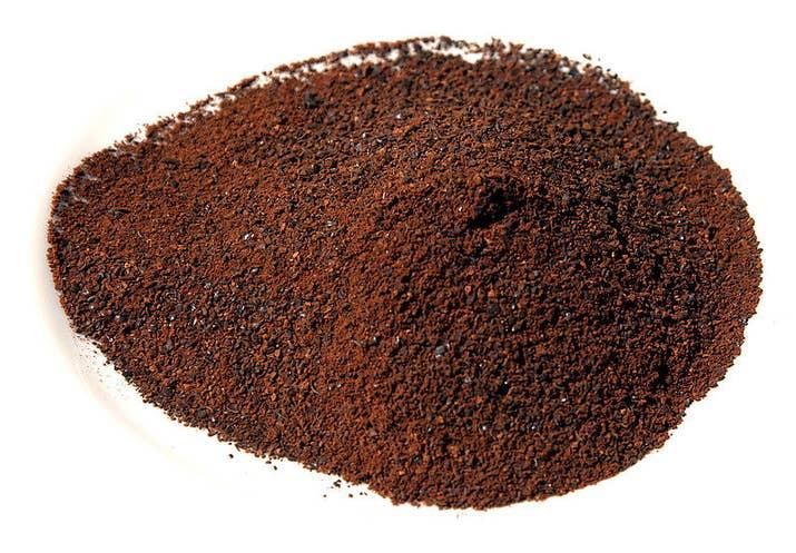 En fermentant, les graines produisent de l'acide lactique, qui est un spermicide qui entre encore dans la composition des produits modernes.