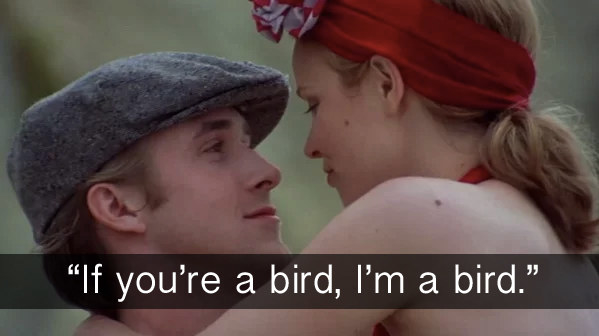 When, in The Notebook, Noah confirmed that he too is a bird.