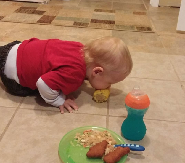This kid who takes a no-hands approach to corn on the cob, served only on the floor.