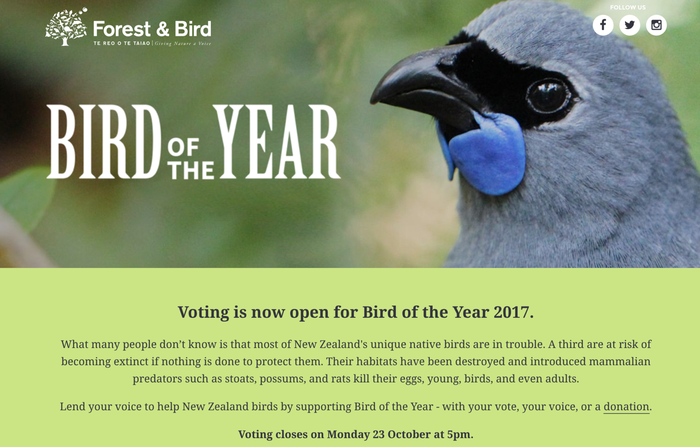 The competition, held by the Royal Forest and Bird Protection Society of New Zealand, asks the public to cast one vote for their favourite endangered bird, and voting closes today.