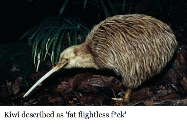"""New Zealand Is In Absolute Chaos After Someone Called The Kiwi A """"Fat, Flightless Fuck"""""""