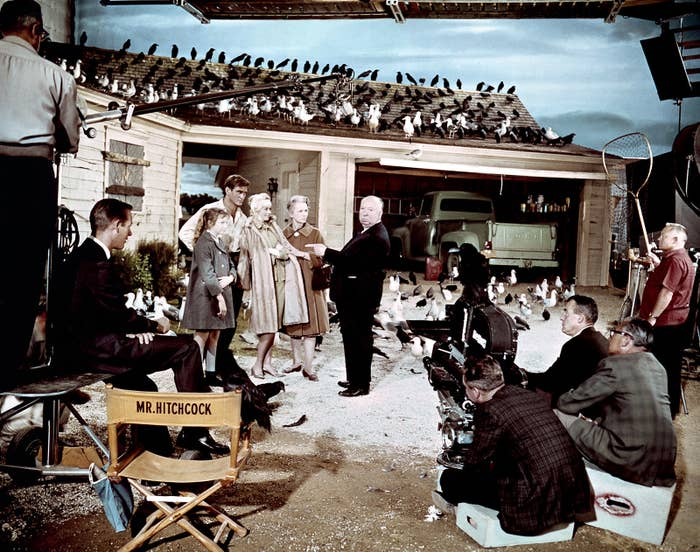 Director and producer Alfred Hitchcock on the set of Hitchcock's movie The Birds with Veronica Cartwright, Rod Taylor, Tippi Hedren and Jessica Tandy.