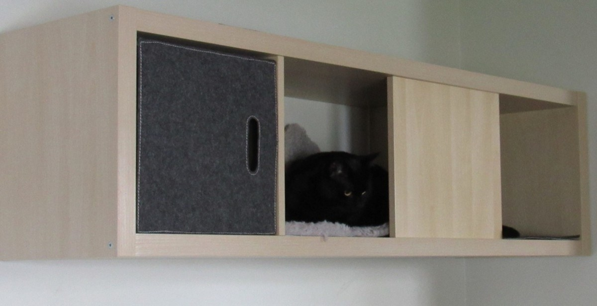 Diy cat box cabinet evanandkatelyncom Pets You Can Make Cozy Little Home For Your Cat And Save Some Floorspace At The Buzzfeed 17 Clever Ikea Hacks That Will Make You And Your Cat Very Happy