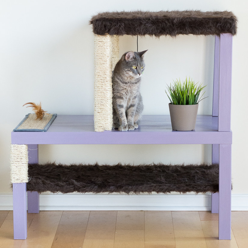 Diy cat box cabinet evanandkatelyncom Wood This Gorgeous Diy Cat Condo Requires Two Different Tables And Few Other Accessories Here Cheercrank 17 Clever Ikea Hacks That Will Make You And Your Cat Very Happy