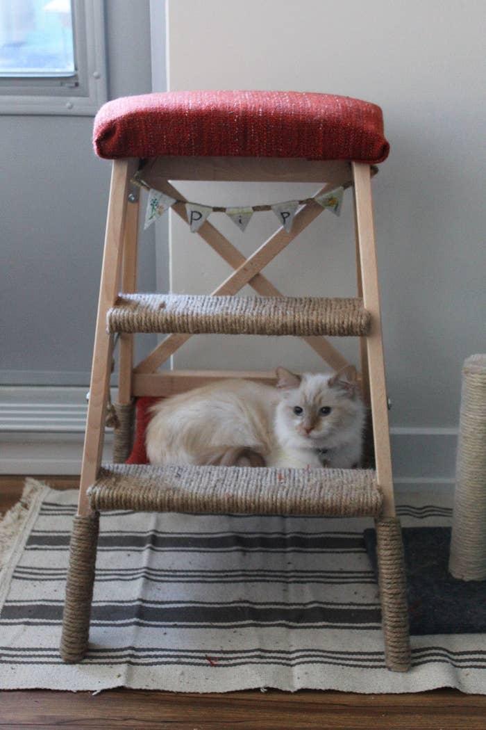 17 Clevere Ikea Hacks Die Deine Katze Und Dich Sehr Glucklich