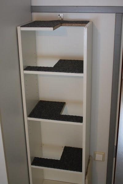 building cat shelves