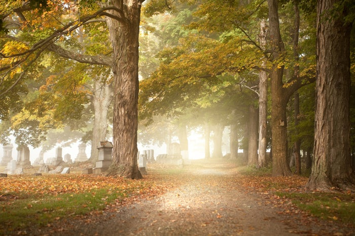 Whether you're visiting a loved one's grave or just being sorta gothic and wandering around the trees, the serious quiet is bound to heighten all kinds of emotions.