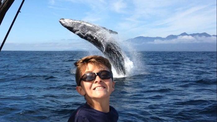 写真に写るのは、11歳の少年ダウソンくん。クジラに遭遇したのは、カナダのバンクーバー島沿岸、家族で釣りを楽しんだ帰り道だった。