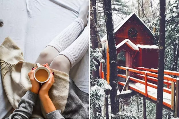 Tell Us What You Love About Fall And We'll Give You A Treehouse To Stay In