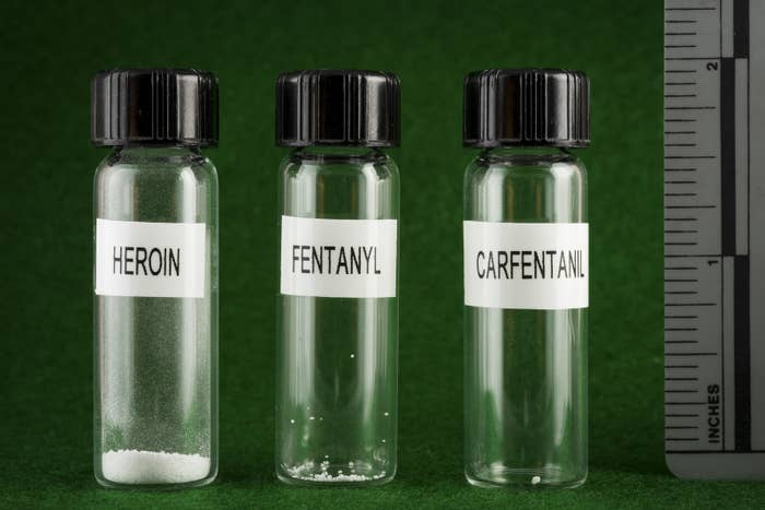 "Lethal doses of heroin compared to ""synthetic"" opioids."