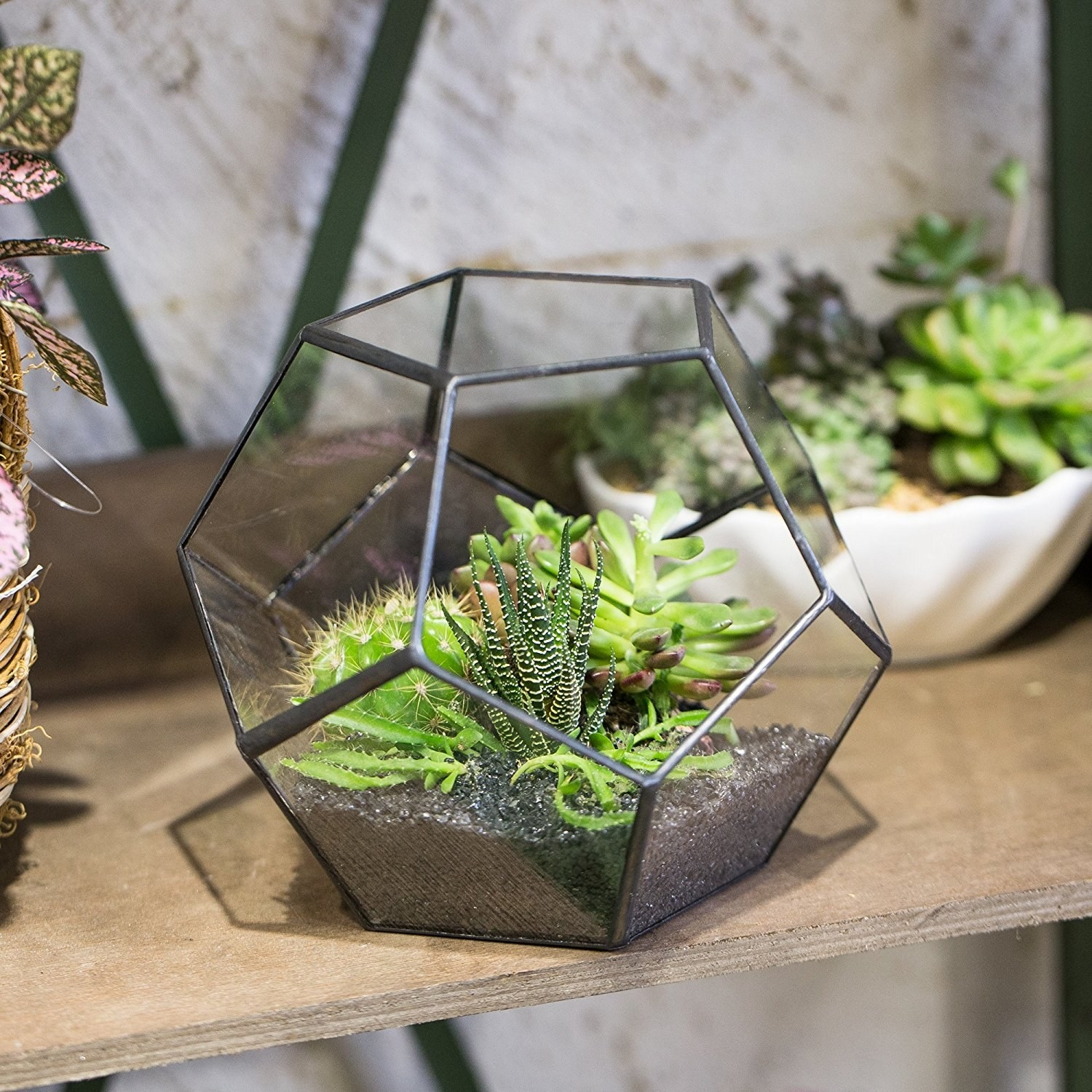 31 Perfect Gifts For Anyone Who Loves Succulents