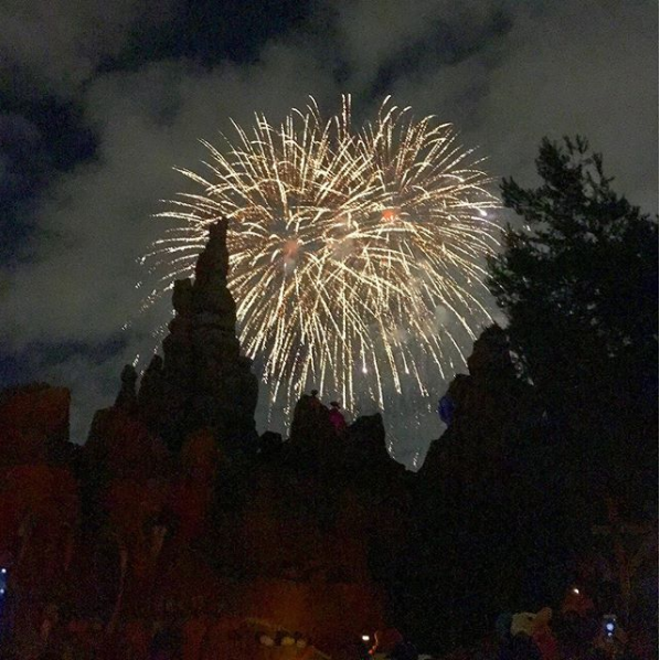 """If you reach the front of the line before the fireworks have started, you can ask to wait to board until they start. Cannot recommend enough!""—christinegb"