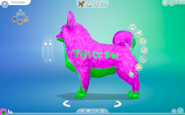 People Should Never Have Been Allowed To Build Pets On