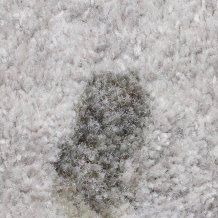 Here's How To Get Every Type Of Stain Out Of Carpet