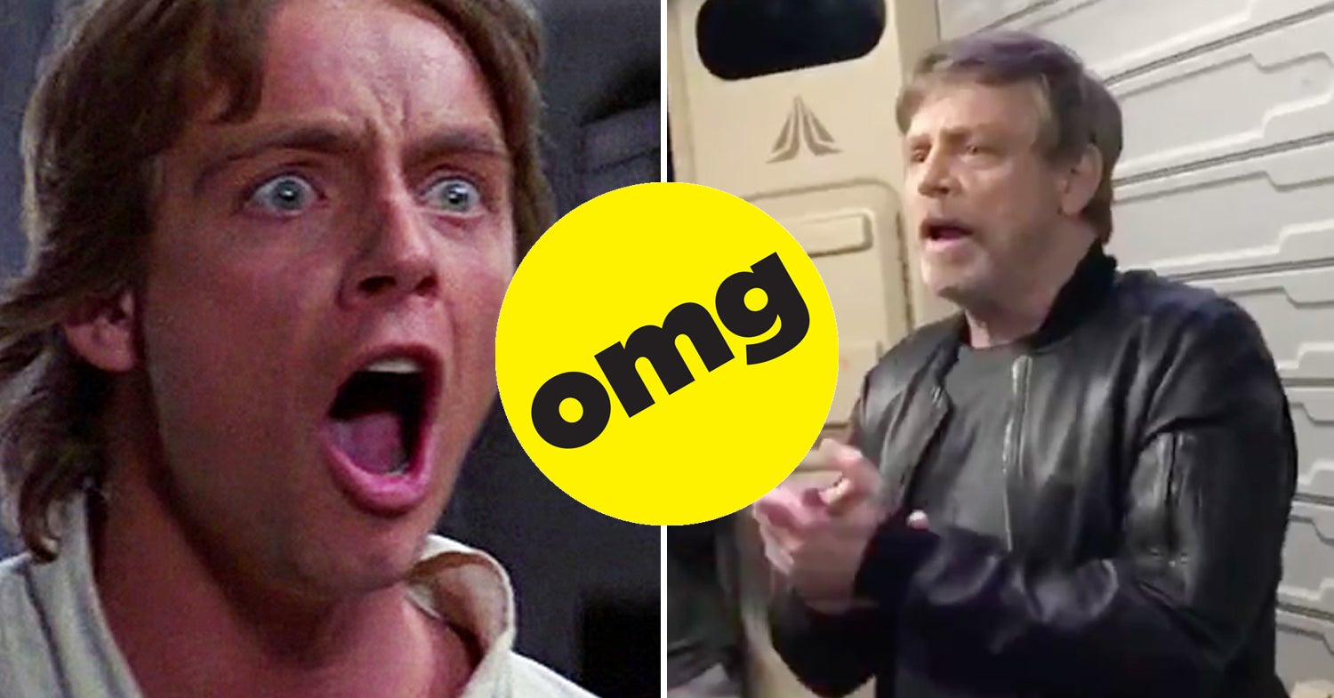 Seriously, Stop Whatever TF You're Doing And Watch This Pure AF Video Of Mark Hamill Surprising Fans