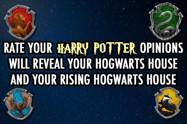 harry potter 2 summary