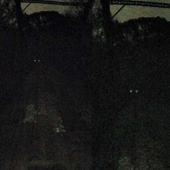 The Goatman is said to have glowing, empty eyes and goat-like horns.