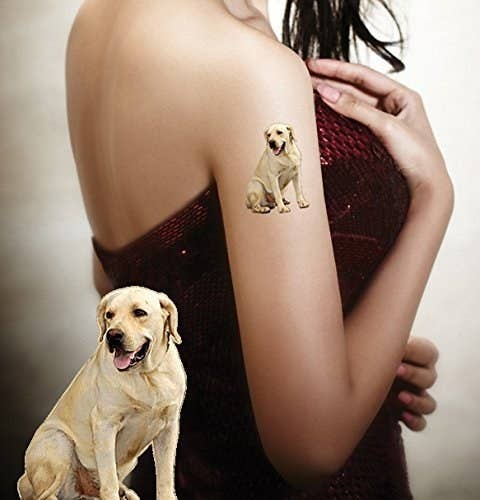 8dabdc82a48f A temporary tattoo that'll *hopefully* stop them from getting an actual  tattoo of their pet — for now.