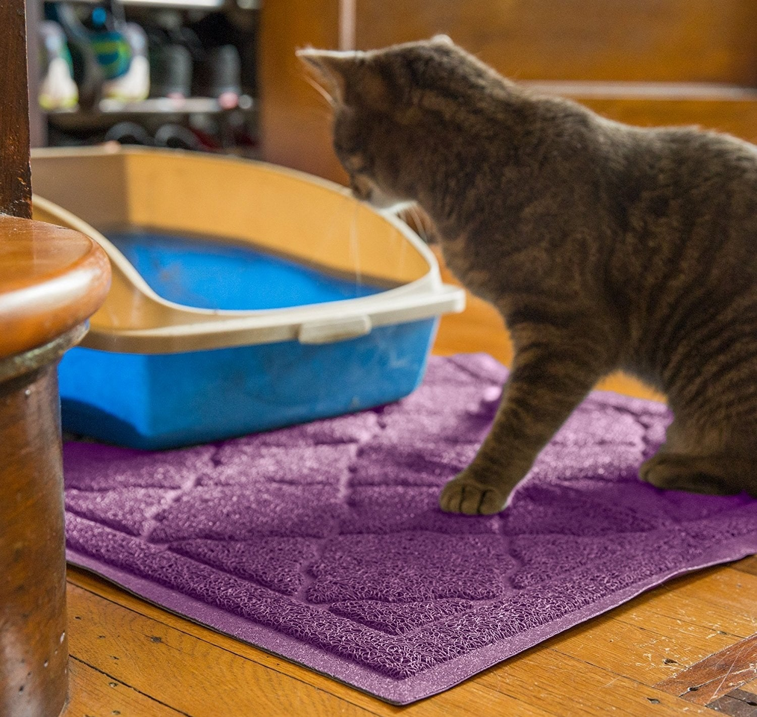 """Promising Review: """"The pile is designed to grab and trap litter from little paws leaving the litter box. It is easy to vacuum, or just do like I do, and take it outdoors for a good shake now and then. Some mats are squishy and my cats won't walk on them, but this one has a nice rough texture they seem to like. Since putting this under the litter box, I have noticed a great deal less scattered litter on the floor around it, so I know it's working. I'm thinking of ordering another one to put under the feed and water bowls, to catch stray food, too."""" –DeborahPrice: $17.99+ Rating: 4.6 out of 5 Colors: seven"""
