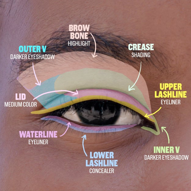 A handy guide to every itty bitty lil' part of your eye.