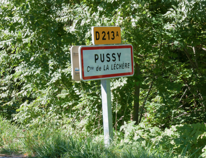Named after a Roman land owner named, if you can believe it, Pussius (link in French).