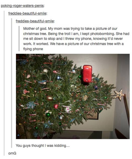 Christmas Tree Tumblr.27 Christmas Tumblr Posts That Will Make You Laugh Out Loud
