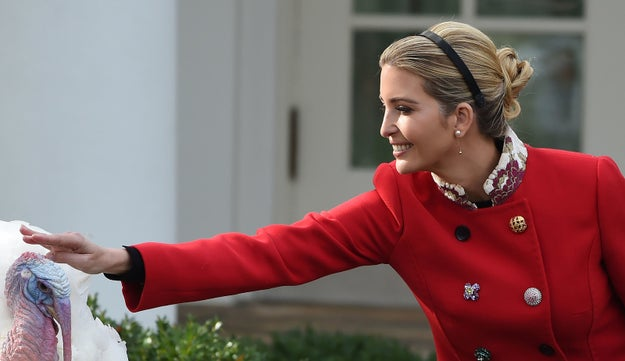 Ivanka Trump, adviser (and daughter) to the president enjoyed a primo Thanksgiving Instagram opportunity this week at the White House.