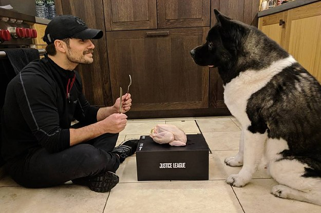 Henry Cavill Throwing His Dog A Thanksgiving Feast Is Everything You've Ever Needed In A Man