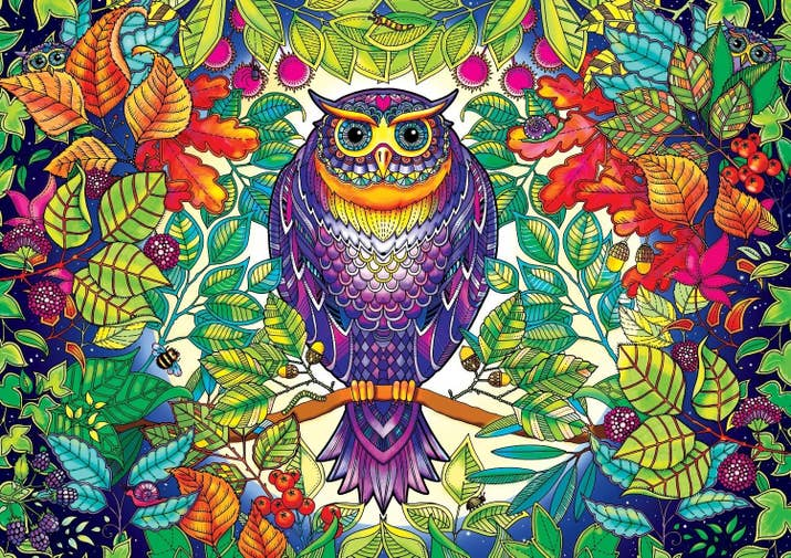 A 500 Piece Owl Puzzle Which Fans Johanna Basfords Secret Garden Coloring Books Will Probably Recognize
