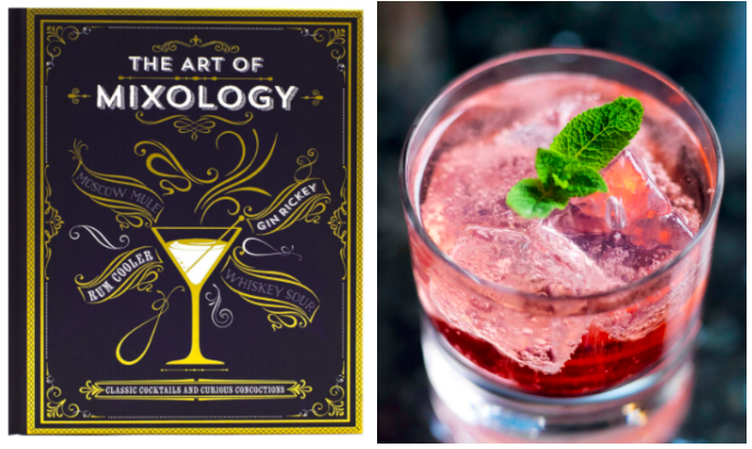 The book comes with classic drink recipes like Moscow mules and whiskey sours, plus lesser-known cocktails. Get it from Amazon for $13.88.