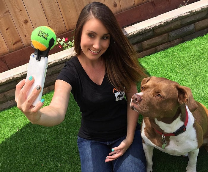 """Promising review: """"Love this product!! We have two Aussie shepherds that we think are beautiful, but getting them to pose for pics has always been a hassle. Not anymore! They are focused (pun intended) on the phone and make aussieome faces when they hear the ball squeak. I highly recommend this for anyone who likes to take pics of their pups. On a related note, this might even work for babies because of the squeaker!"""" —NolefansGet it from Amazon for $9.99 or a similar product from Walmart for $7.72+."""