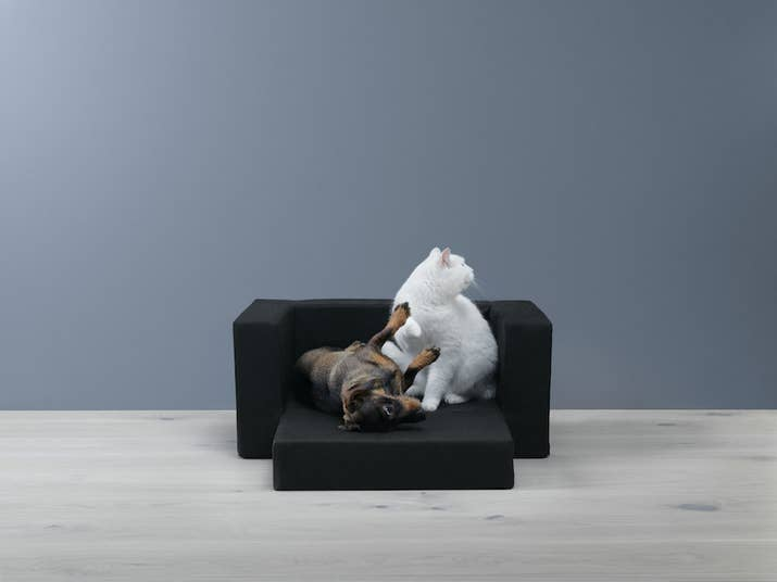 Ikea Wants You To Buy Miniature Furniture For Your Pets - Ikea has launched its own pet furniture collection and its paw some