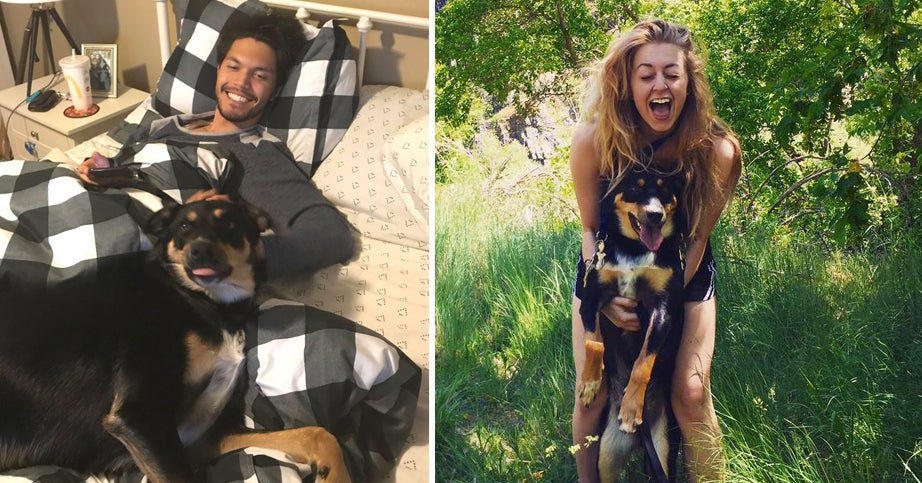 This Couple Said Their Dog Faked A Cough So They Could Stay Home With Him (It Worked)
