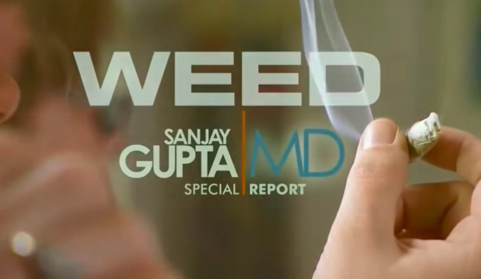"""""""He really publicized CBD when he had those weed shows,"""" Weiss says, pointing to the case of Charlotte, a child with a severe form of epilepsy. """"The family claimed that she was made much better when she took a type of cannabis, which is now named Charlotte's Web,"""" she says. """"It was a high-CBD form of cannabis."""" """"In some ways he brought a lot of attention to CBD for that purpose, and it did spur a lot of research. But it also spurred a lot of confusion because people conflated medical marijuana in general with CBD,"""" says Weiss. """"It's been purported to have effects on everything, and we really need to figure out what's real and what isn't — what's meaningful. And that's really why we need a lot more research."""""""