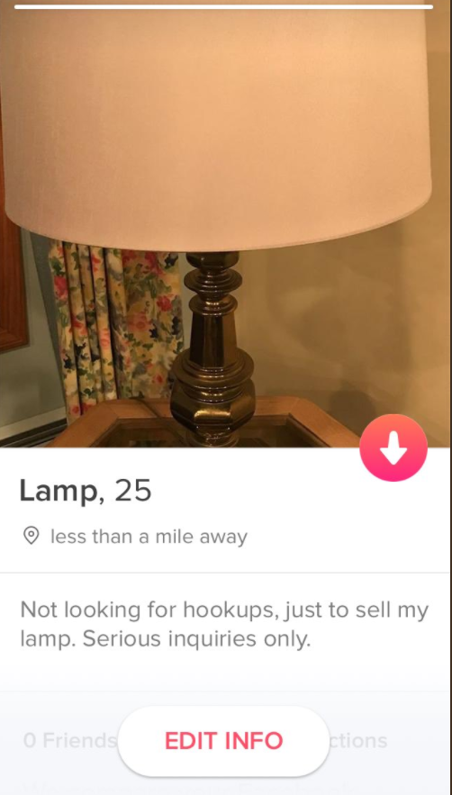 Recently, she was hanging out with her cousin when she had an idea for a new Tinder account. Instead of using it to find a date, she could use it to sell something. Her cousin graciously offered her a lamp she was trying to unload.
