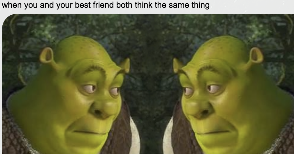 19 Jokes That Were Probably Made For Only You And Your Best Friend
