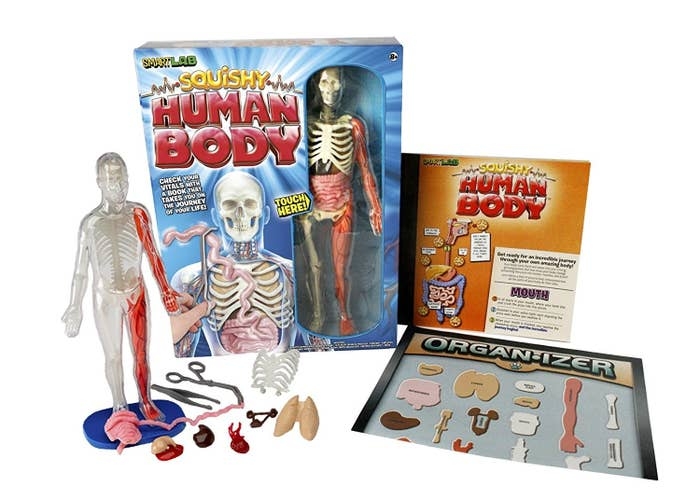 """Promising review: """"I have never seen anyone so excited to learn about the human body than my little girl when she begged to have this instead of a toy. She loves looking at all the organs and skeletal structure of the human body. Very pleased with this purchase and it has provided hours of fun for my daughter."""" —Zach TydingsGet it from Amazon for $21.99."""
