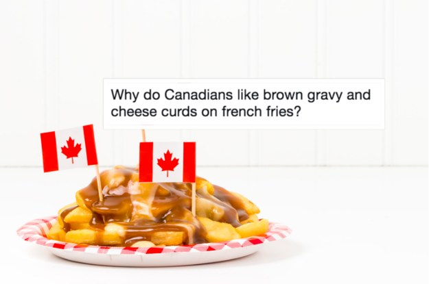 15 Questions The Internet Has For Canadians