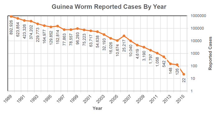 Guinea worm disease is a nasty parasitic illness that, until not that long ago, was common in large parts of Africa. Tiny organisms in dirty standing water carry the worm larvae, and are drunk by humans. Then the fully grown adult female worm, around a metre long, bursts out of a sore on the body. It can be disabling and disfiguring; patients are bedridden for weeks and often get secondary infections in the wound.But thanks to public health efforts to stop its spread, such as encouraging people to filter water and keeping infected people away from water, over the last three decades – partly led by Jimmy Carter, the former US president – this small but significant source of human misery has nearly been eliminated.