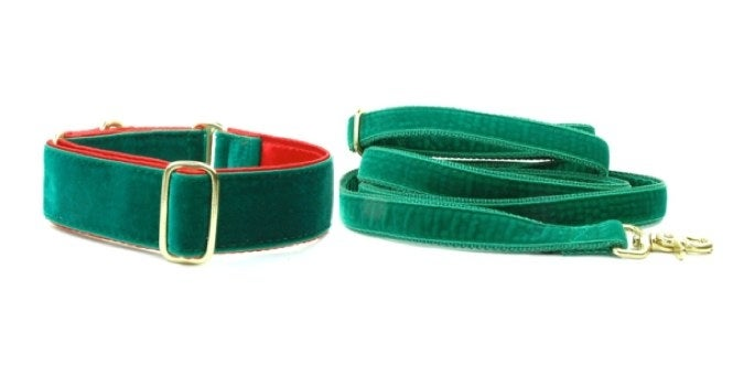 First and foremost, your new pup will need a durable collar (or harness) with an ID tag and leash. If you are looking for fashionable, high-quality collar and leash options, check out2 Hounds Design. They have countless styles, designs, patterns, fabric and something to celebrate just about every occasion. This one-stop-collar and leash shop will provide you with something perfect for your puppy, but also for your dog as he grows. There are options to customize your dog's collar, plus they offer some with attached tags that don't jingle. I can't speak for Santa, but I have a feeling this is thestyle collarandmatching leashhe would pick for your new puppy on Christmas morning.