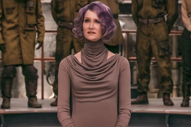Fans will continue to debate every aspect of the film for weeks and weeks, but can we all agree that Laura Dern's Admiral Holdo was *the best* part of the movie? If not, weigh in with your own ~opinions~ below!