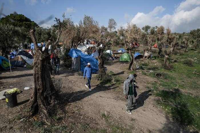 Due to overcrowding, refugees have set up tents within the olive tree groves outside Moria.