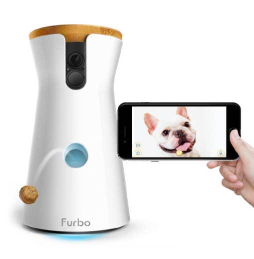 Esta cámara te permite estar en contacto todo el tiempo con tu mejor amigo, mantenerlo monitoreado, hablarle y hasta lanzarle premios.
