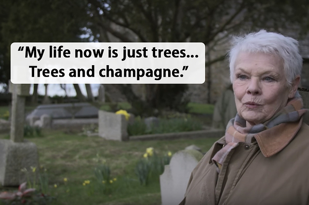tmp name 2 5042 1513778929 1_dblbig dame judi dench has done a documentary about trees and it's bloody