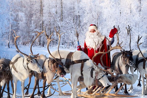 santas reindeer are actually female and duh of course - Santa And Reindeer Pictures