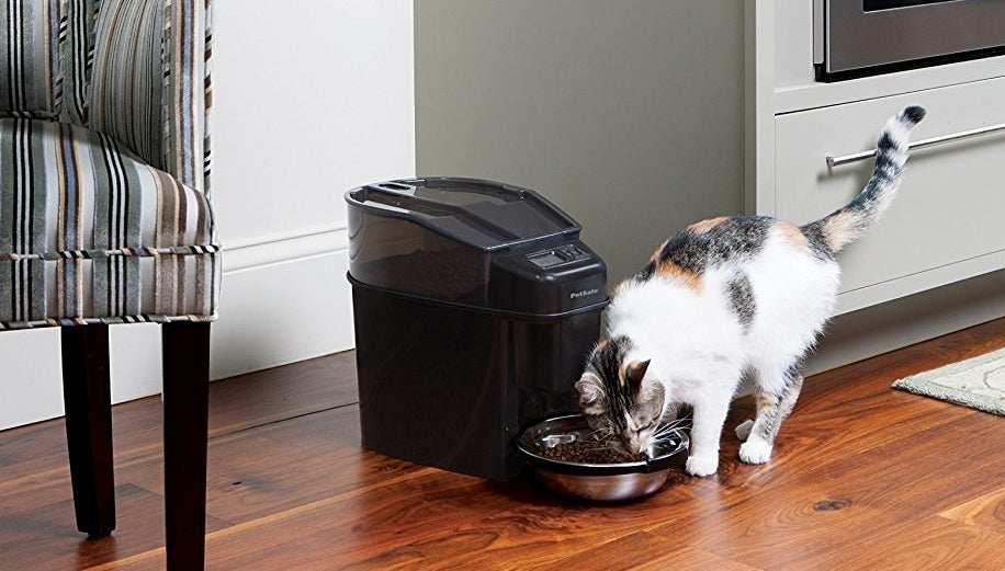 """The digital timer programs up to 12 meals a day with flexible meal portions from 1/8 cup up to 4 cups. Hopper holds 24 cups of dry food and bowl holds 5 cups of food. Has both slow and immediate feed modes. It disassembles for easy cleaning with some dishwasher-safe parts.Promising review: """"This thing is a freaking life changer! Hands down the best purchase I've made for my cat. I fit a whole bag of food in there and it lasts longer because I'm not overfeeding her. It's actually helped a lot with weight control and I'm not being woken up by her if I forgot to feed her. It's very easy to set up and change the settings, all you have to do is follow the instructions in the manual. I have already recommended this to all my friends with pets. This thing pays for itself by how much you save from not overfeeding, not to mention the completely hassle-free feeding now. I don't even have to think about feeding her besides dumping a new bag of cat food into the reservoir every few weeks. I can't praise this thing enough."""" —RoseGet it from Amazon for $129.95."""