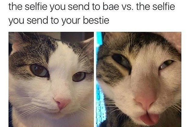 28 Memes You Need To Send Your Partner ASAP